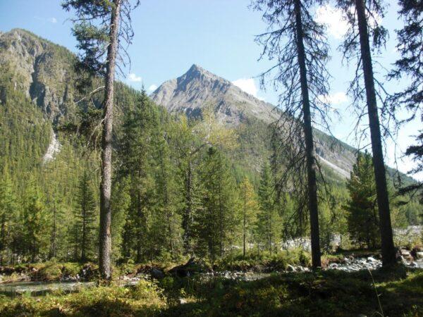 трекинг-тур в горы